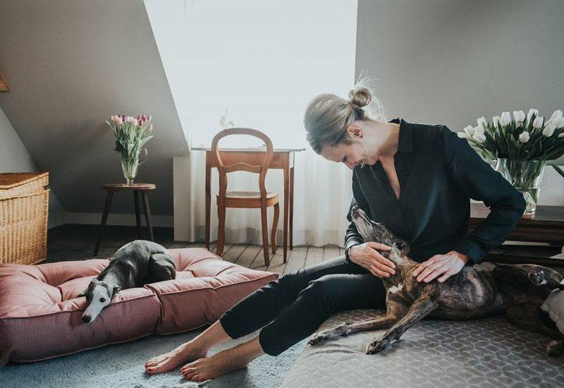 Hunden er menneskets bedste ven
